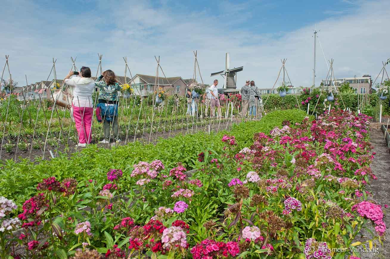 Historische Tuin Aalsmeer : Bezoek aan de historische tuin in aalsmeer u groep a